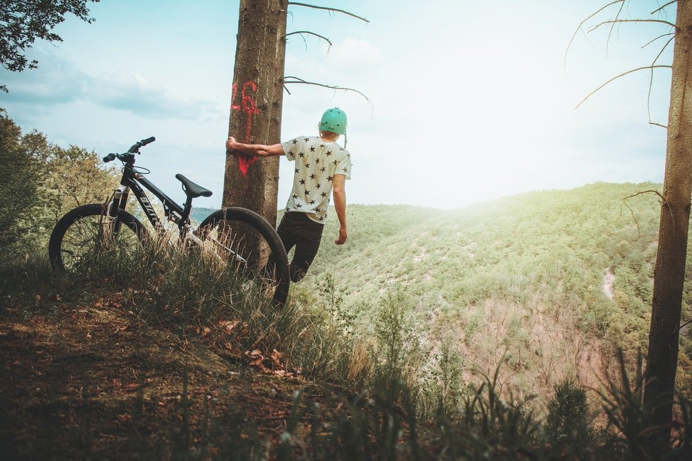 best budget mountain bikes